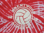 Brentwood Academy Volleyball Team